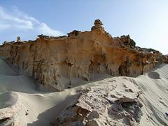 Tertiärer Strandsandstein als Kliff mit versteinerten Mangrovenwurzeln