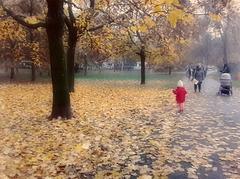 Lo stupore della piccola Giulia..guardando l'autunno nel parco!