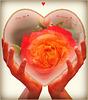 Bonne fête à tous les Valentins & Valentines ♥