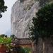Capri GR 5