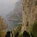 Capri GR 6