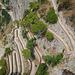 Capri GR 7
