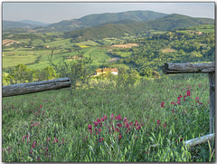 HFF - Memories of Tuscany: Fenced view to Volterra