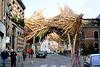 Bergen 2015 – Trees gone wild