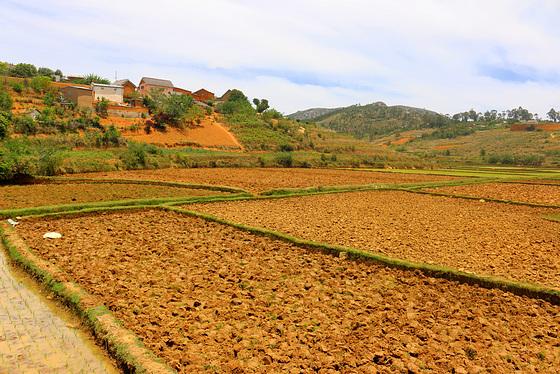 niewiarygodna czerwień ziemi Madagaskaru
