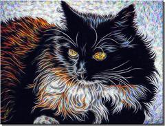 Chat... chat mystérieux,tu es l'ornement du foyer
