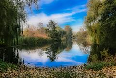 City Pond ...  (000°) HFF