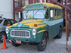 International Shortbus