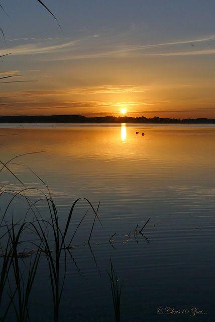 Good Morning Sunshine... 2