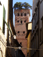 Guinigi Tower (1600).