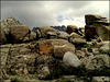 Sierra de La Cabrera, granite. PLEASE STAY, DON'T RUN AWAY (ESPECIALLY NOW)!!!