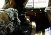 1941 Buick 8 interior