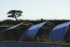 Solara4, Vaqueiros, Algarve , HFF