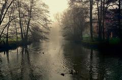Ein nebeliger Wintertag - A foggy winter day