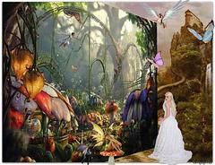 Arriving in Fairyland