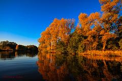 2018-10.13. - Aller Sedden Boye, Autumn Colors