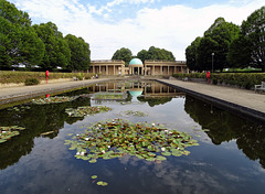 Eaton Park  Lilly Pond