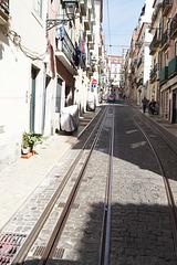 lisbonne les tramways
