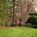 Blühendes Barock  - Am Japangarten