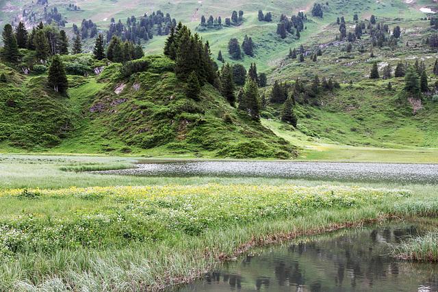 Bergsee (Kalbelesee)