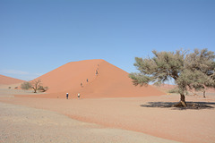 Namibia, Ascent to the dune No45 in the Sossusvlei National Park
