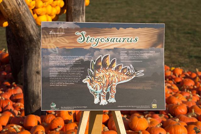 Kürbisschau Krewelshof - Stegosaurus DSC00793