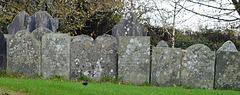 Stoke Climsland Graves
