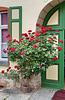 Fassade mit Rosen