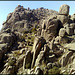 Cancho de La Bola, granite home of vultures. Better on large I feel.