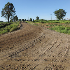 Bend in a rural road thru agriculture.