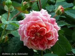 Doué la Fontaine (pays de Loire)