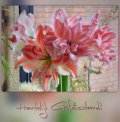 Voor Louisa!         http://www.ipernity.com/home/2249700