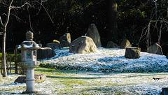 Japanese garden in London