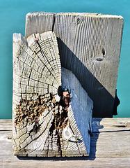 Old Moorings. Blyth Harbour