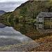 Lynn Dinas Reflections
