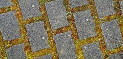 Verbundsteine - Interlocking paving stones