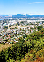 High Above Rotorua.