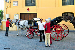 Negociando un paseo en coche de caballos - Córdoba.