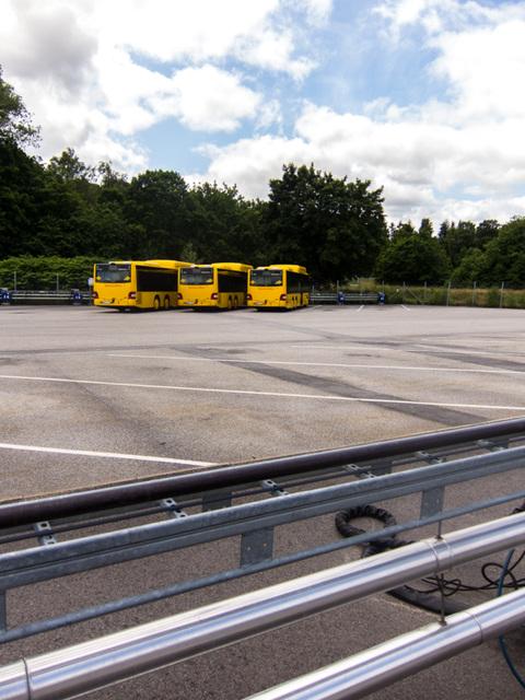 Three yellow busses