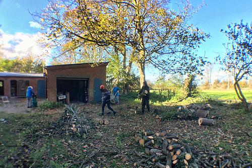 Falsterhus vor der Garage Baum zerlegen // -holzarbeit 3891