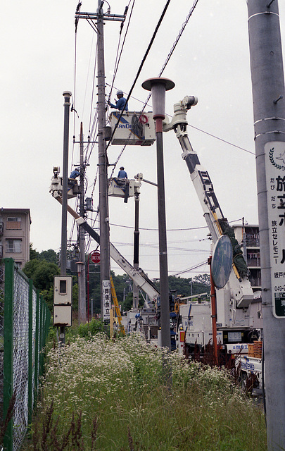Taking care of power lines