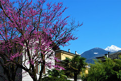 Sondrio Italy
