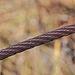 Drahtzaun - Wire Fence (2)