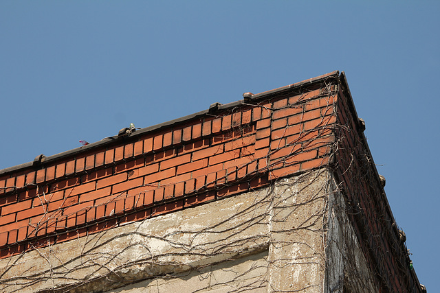 power building - non sandblasted brick