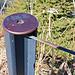 Drahtzaun - Wire Fence (1) (PiP)
