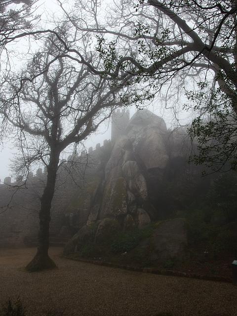 Moors in the Mist