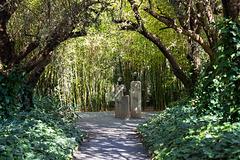 Anima Garden - 3