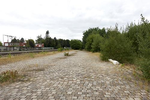 Güterbahnhof Halstenbek // brache-05448-co-05-08-18