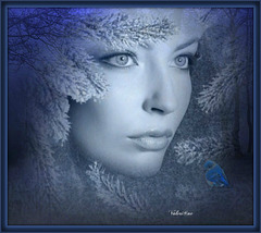 Les yeux de l'hiver