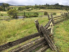 Wine Country Fence